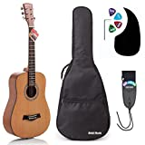 Acoustic Guitar Bundle Junior (Travel) Series by Hola! Music with D'Addario EXP16 Steel Strings,...
