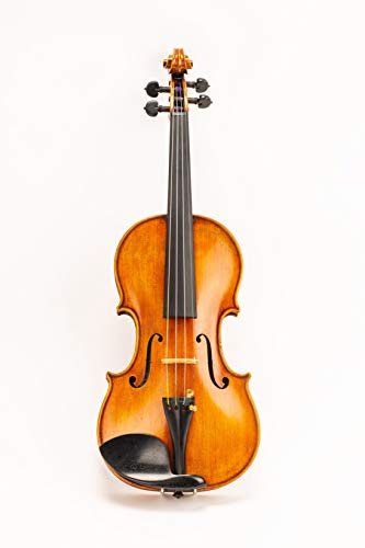 D Z Strad Model 220 Violin with Dominant strings, bow, case, rosin and shoulder rest - Open Clear...
