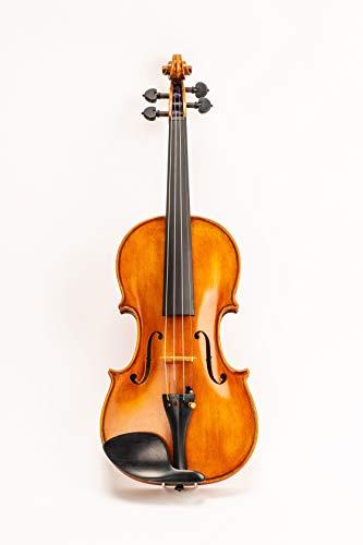 D Z Strad Model 4/4 Full Size 709 Violin Handmade by Prize Winning Luthiers with Bam Case, Bow,...