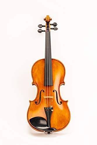 D Z Strad Model Full Size 4/4 N615 Violin Handmade by Prize Winning Luthiers with Bam Case, Bow,...