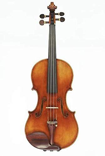 D Z Strad Violin Model 800 Full Size 4/4 with Dominant Strings, Bow, Case and Rosin (Full Size -...