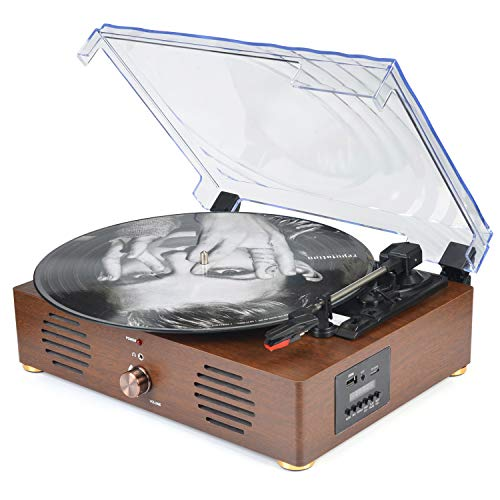 Record Player Turntable with Speakers 13-in-1 Wireless Portable LP Phonograph TF Card FM Radio with...