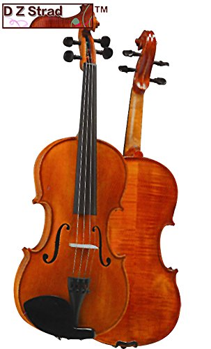 D Z Strad Violin Model 101 with Solid Wood with Case, Bow, and Rosin (1/4 - Size)