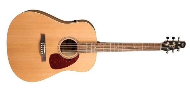 Seagull QI Guitar