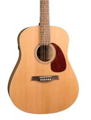 Seagull_QI_Acoustic_Electric_Guitar
