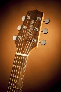 Takamine Guitar Headstock