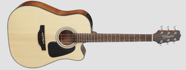 Takamine_Acoustic-Electric_Guitar