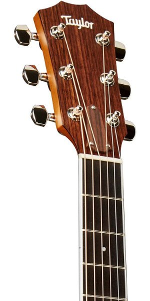 taylor 414ce headstock