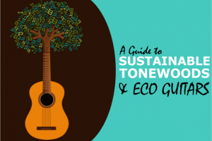 Sustainable Tonewoods for Eco Friendly Guitars (& the Companies Who Make Them)