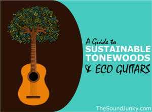 Guide to Sustainable Tonewoods and Eco Guitars