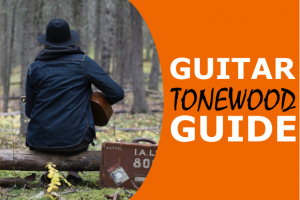 Tonewood Guide: Which Wood is Best for Acoustic (& Acoustic-Electric) Guitars