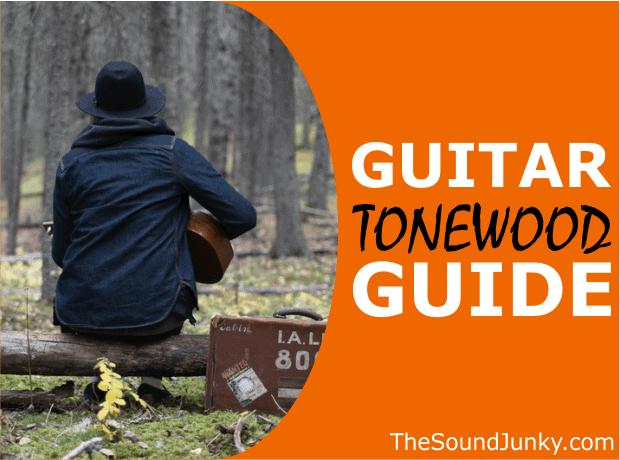 Tonewood Guide - Which is the Best Wood for Acoustic Guitars