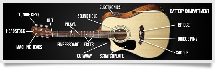 acoustic electric guitar anatomy