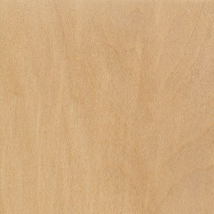 A sample of sealed Basswood.