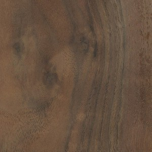 A sample of Claro Walnut wood.