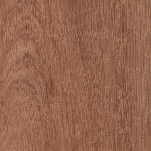 A sample of Sapele wood.