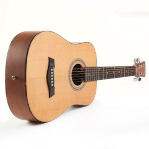Hola Music acoustic guitar