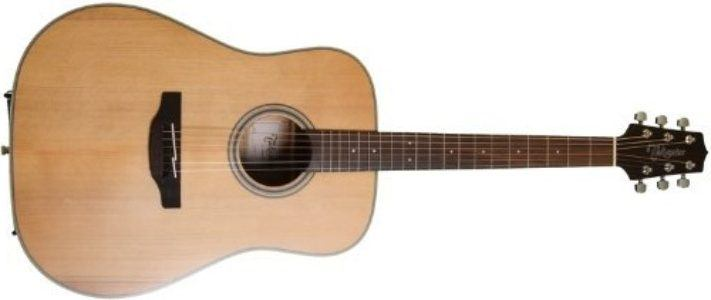 Takamine GD20 guitar