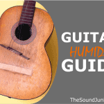 A Guide to Acoustic Guitar Humidity