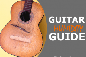 Acoustic Guitar Humidity: Learn How to Protect Your Instrument from Damage