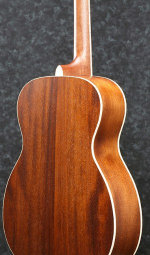 AVC10MH Guitar back of