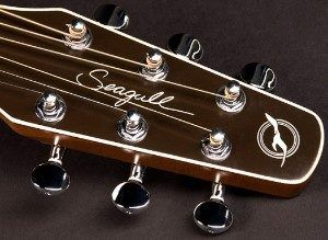 Entourage Acoustic Guitar Head Stock