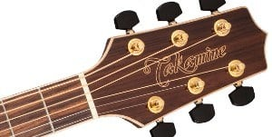 Headstock of Takamine GD93-NAT guitar