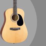 Jasmine S35 guitar