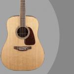 Takamine GD93-NAT guitar