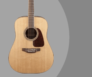 Takamine GD93-NAT guitar