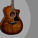 Taylor 224ce Deluxe Koa