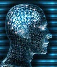 brain-xray