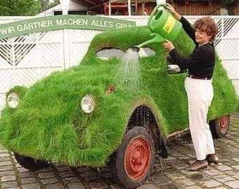 grass-car