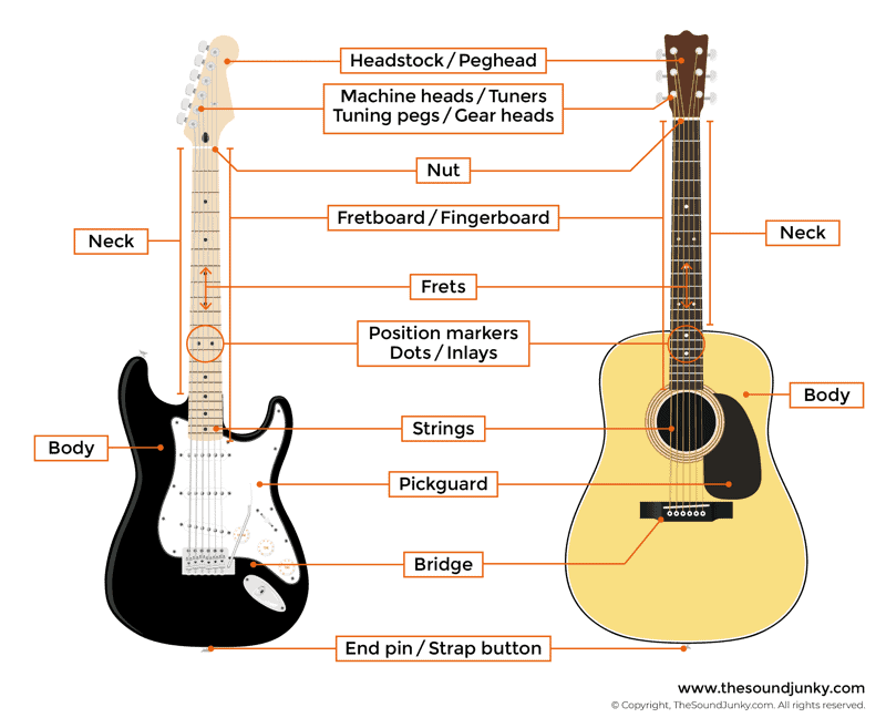 It is an image of Candid Acoustic Guitar Labeled Parts