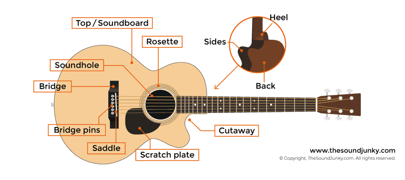 Parts of an Acoustic Guitar
