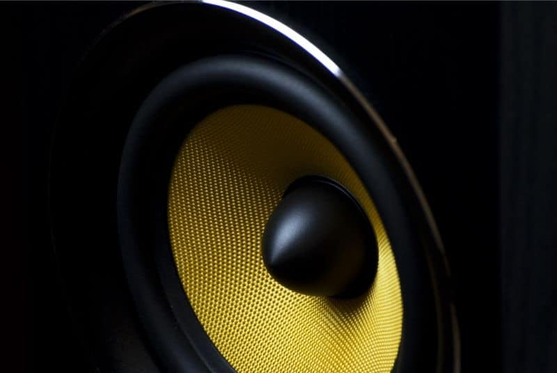 Close Up of 12 Inch Subwoofer