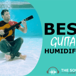 Best Guitar Humidifier