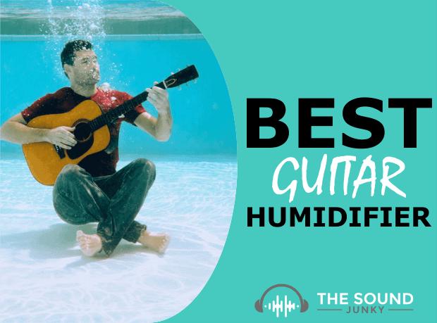 Best Guitar Humidifier