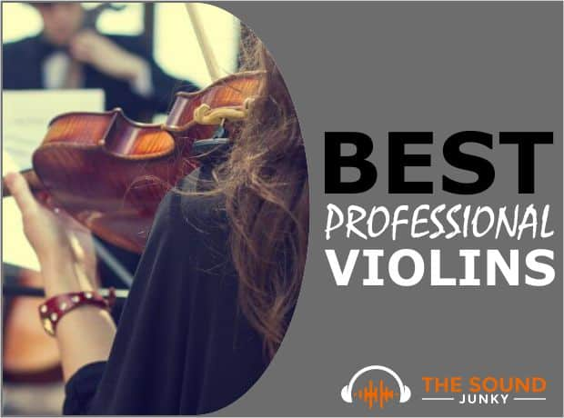 Best Violin for Professionals