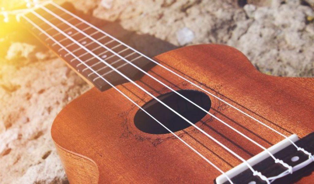 Close up of Ukulele Strings