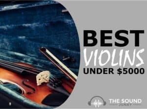 Best Violin Under $5000