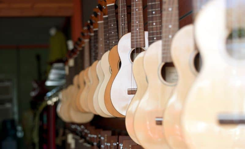 Different Types of Ukulele on Display