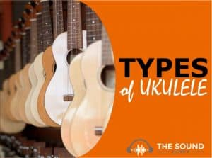 Types of Ukulele