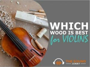 Which Wood Is Best for Violin
