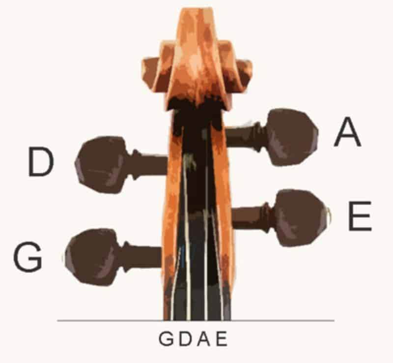 violin strings labelled