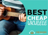 4 Best Cheap Ukuleles (Low Budget & High Quality)