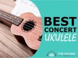 7 Best Concert Ukuleles In 2020 For All Budgets