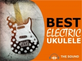 6 Best Electric Ukuleles In 2020 (Under $100 to Over $500)