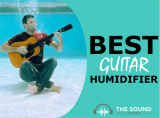 Best Guitar Humidifier In 2020 – 7 Top Classical, Electric & Acoustic Guitar Humidifiers