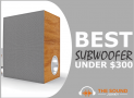 6 Best Subwoofers Under $300 (Car & Home Theater)